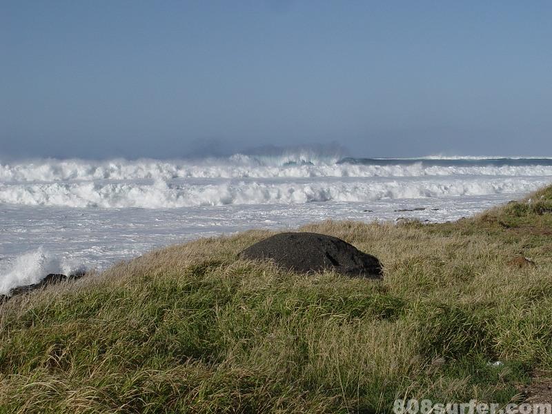 photo de surf 342
